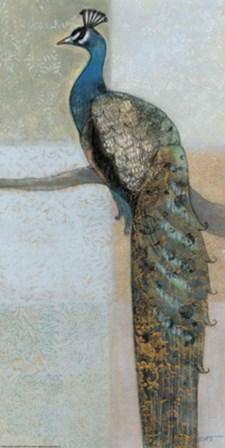 Resting Peacock II by Norman Wyatt Jr. art print