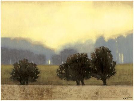 Villa Park II by Norman Wyatt Jr. art print