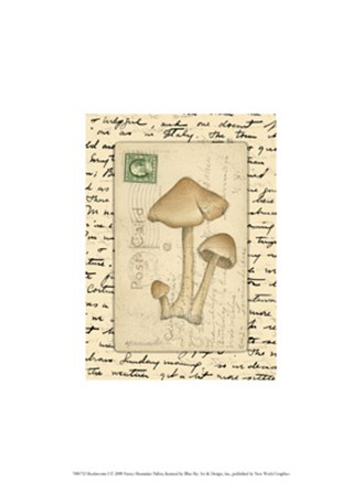 Mushrooms I by Nancy Shumaker art print
