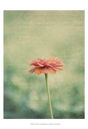 Flower Portrait III by Meghan Mcsweeny art print