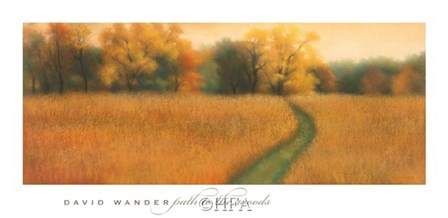 Path to the Woods by David Wander art print