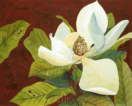 Magnolia II by George Caso art print