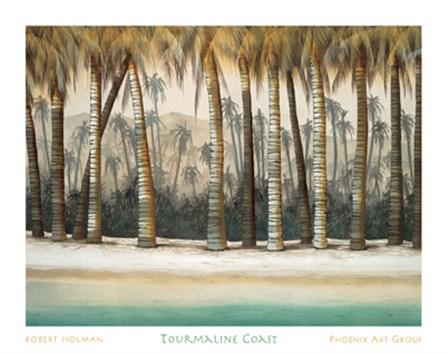 Tourmaline Coast by Robert Holman art print
