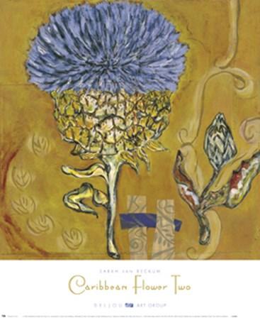 Caribbean Flower Two by Sarah Van Beckum art print