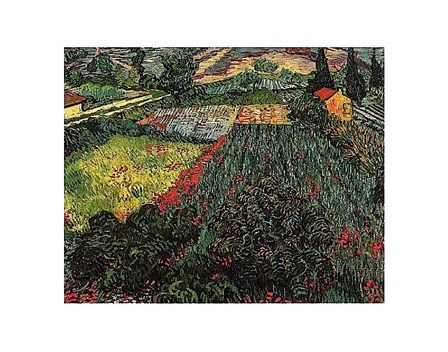 Field of Poppies, Saint-Remy, c. 1889 by Vincent Van Gogh art print