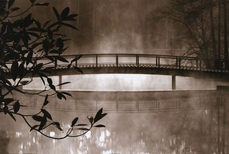 Callaway Garden Pond by Nancy Rotenberg art print