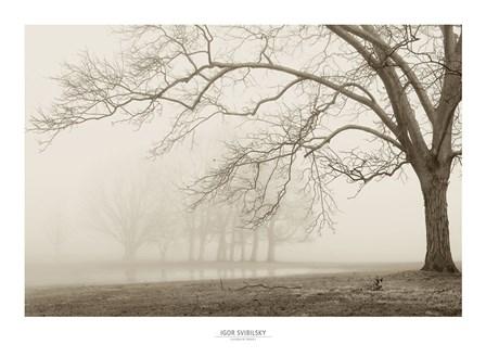 Layers of Trees I by Igor Svibilsky art print