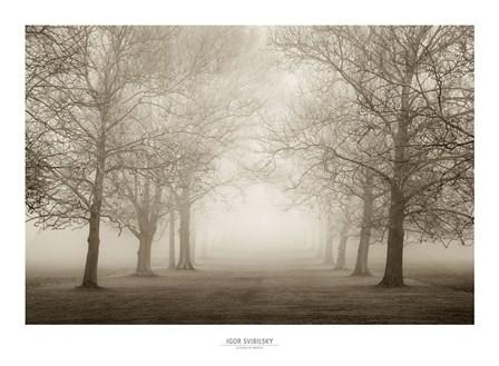 Layers of Trees II by Igor Svibilsky art print