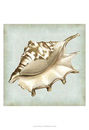 Sea Dream Shells IV by Vision Studio art print