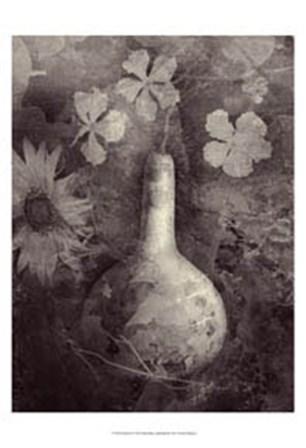 Gourd II by Elena Ray art print