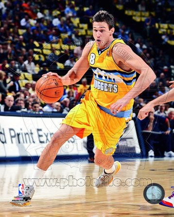 Danilo Gallinari 2012- 13 Action art print