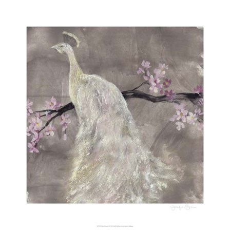 Peacock Serenity II by Jennifer Goldberger art print