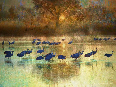Cranes in Mist II by Chris Vest art print