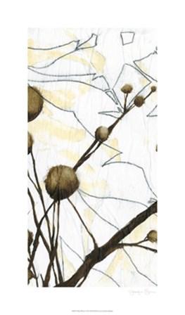 Willow Blooms I by Jennifer Goldberger art print
