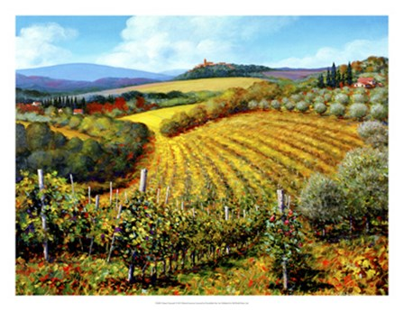 Chianti Vineyards by Michael Swanson art print