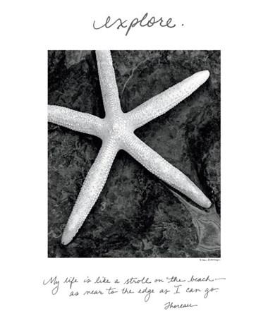 Explore by Debra Van Swearingen art print