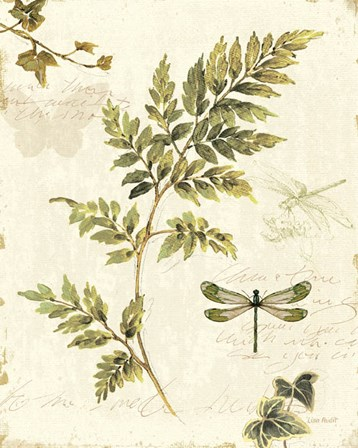 Ivies and Ferns III by Lisa Audit art print