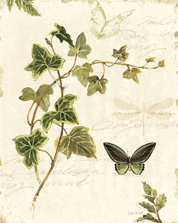 Ivies and Ferns IV by Lisa Audit art print