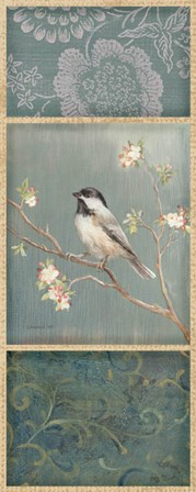 Black Capped Chickadee by Danhui Nai art print
