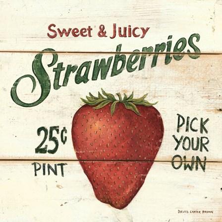 Sweet and Juicy Strawberries by David Carter Brown art print