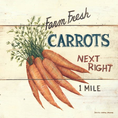 Farm Fresh Carrots by David Carter Brown art print