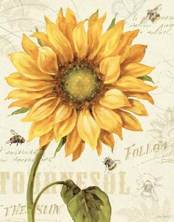 Under the Sun I by Lisa Audit art print
