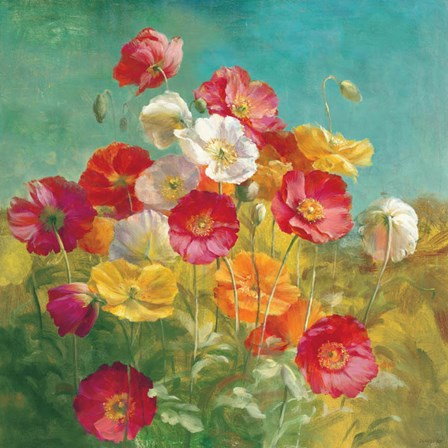 Poppies in the Field by Danhui Nai art print