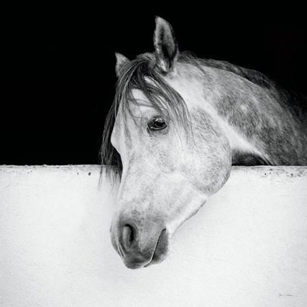 Lonesome Gray by Lisa Cueman art print