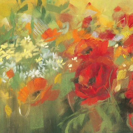 Oriental Poppy Field II by Carol Rowan art print