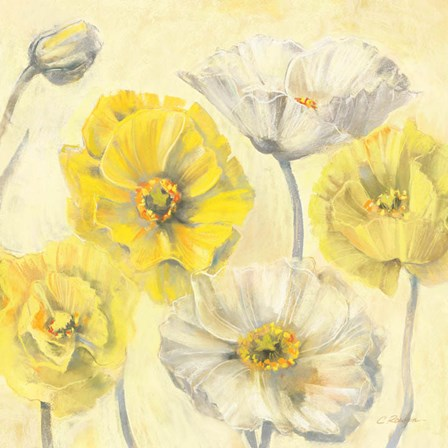 Gold and White Contemporary Poppies II by Carol Rowan art print