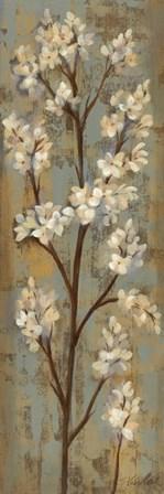 Almond Branch I by Silvia Vassileva art print