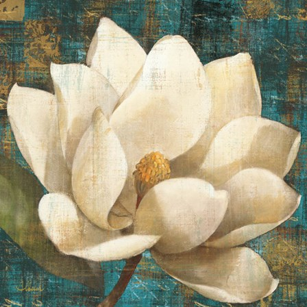 Magnolia Blossom Turquoise by Albena Hristova art print