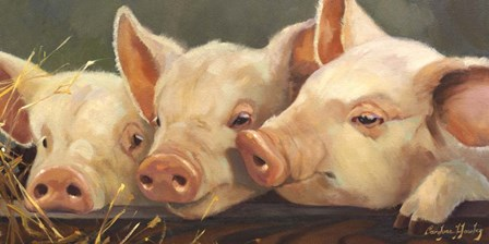 Pig Heaven by Carolyne Hawley art print