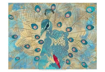 Graphic Peacock I by Catherine Kohnke art print