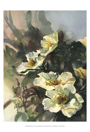 Hadfield Roses II by Clif Hadfield art print