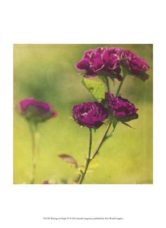 Waiting on Purple IV by Jennifer Jorgensen art print