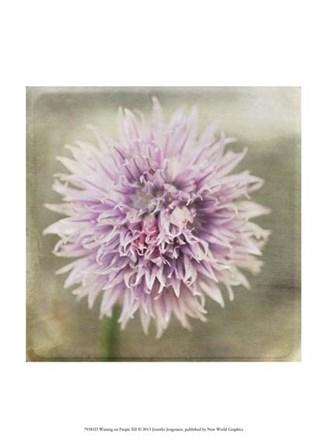 Waiting on Purple XII by Jennifer Jorgensen art print