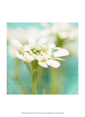 White Flowers I by Jennifer Jorgensen art print