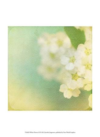 White Flowers II by Jennifer Jorgensen art print