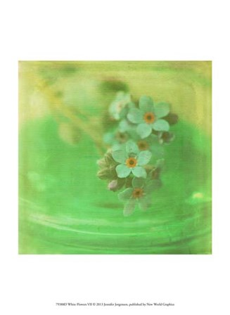 White Flowers VII by Jennifer Jorgensen art print