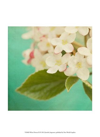 White Flowers IX by Jennifer Jorgensen art print
