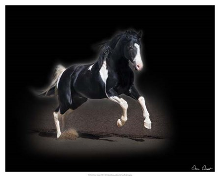 Horse Portrait VIII by David Drost art print