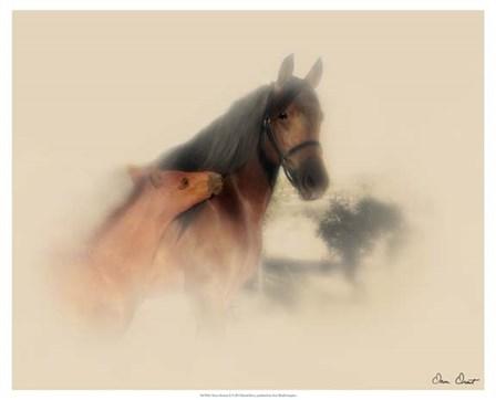 Horse Portrait X by David Drost art print
