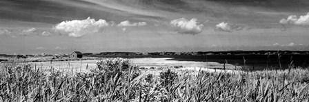 Shore Panorama III by Jeff Pica art print