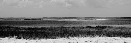 Shore Panorama IV by Jeff Pica art print