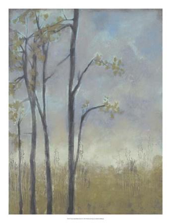 Tree-Lined Wheat Grass II by Jennifer Goldberger art print