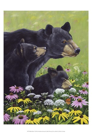 Black Bears by Fred Szatkowski art print