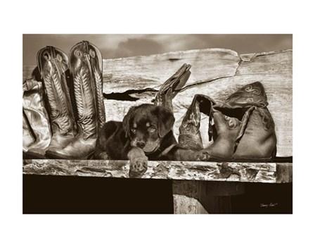 Big Foot by Barry Hart art print