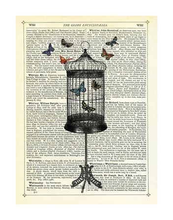 Bird Cage & Butterflies by Marion McConaghie art print