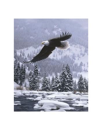 Free Flight (detail) by Daniel Smith art print